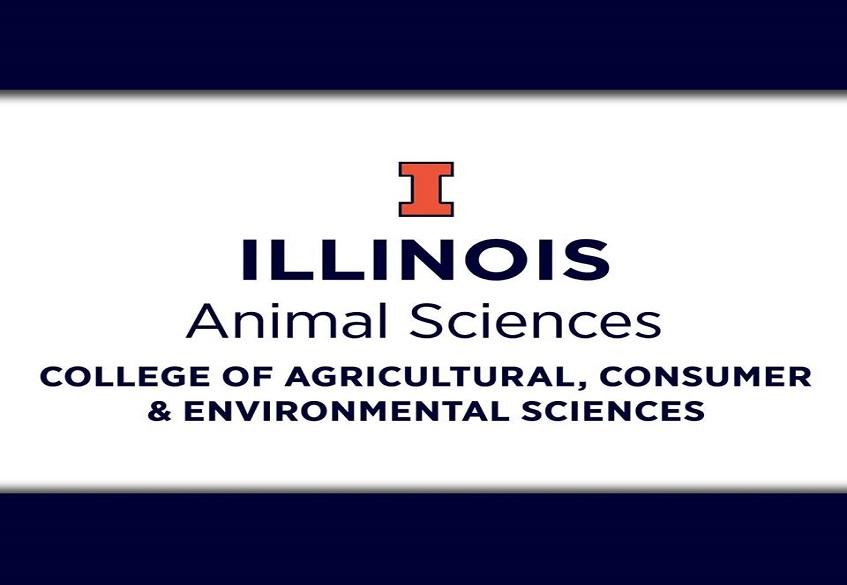 درس هایی از کلاس های آموزشی دانشگاه ایلینوی در سال 2018