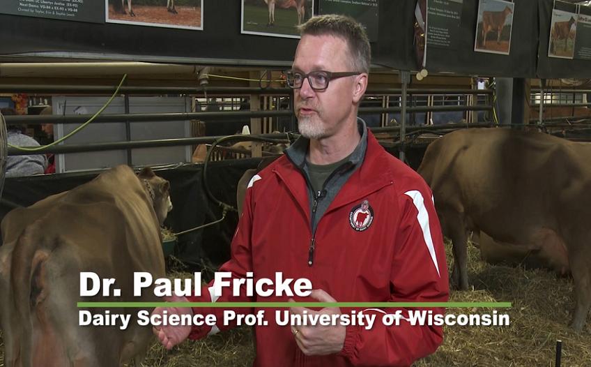 چگونه یک گاو غیر تخمک گذار را آبستن کنیم؟