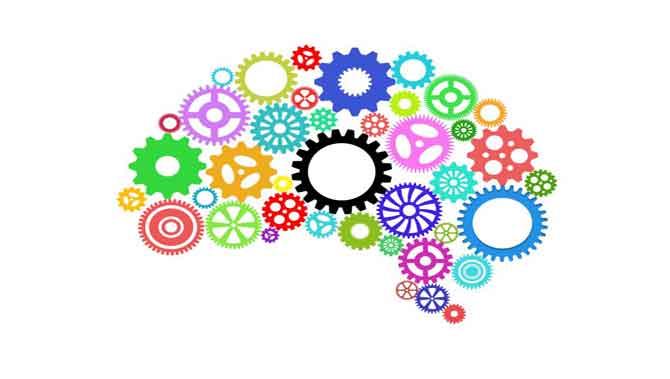 نظریه های اتیسم(اوتیسم):تئوری نقص عملکرد اجرایی