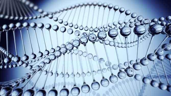 تازه های ژنتیک درباره اتیسم(اوتیسم)