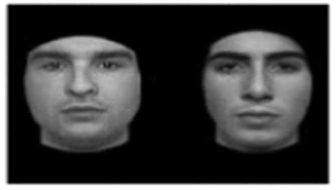تستی که توانایی بچه های دارای اختلال اتیسم(اوتیسم)را در تشخیص چهره ها ارزیابی میکند