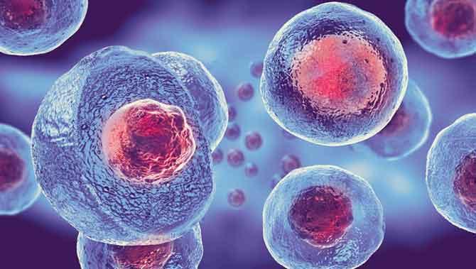 نقش سلولهای بنیادی در درمان اختلال طیف اوتیسم
