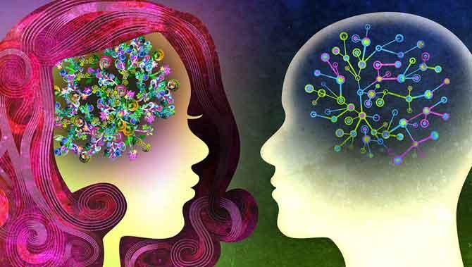 نظریه های اتیسم:مغز مردانه نامتعادل(EBM)