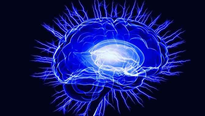 در مغز کودک دارای اتیسم(اوتیسم)چه میگذرد