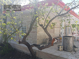 1000متر باغ ویلا سرسبز در قجرآباد شهریار