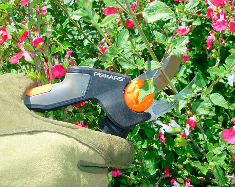 اصول باغبانی 2