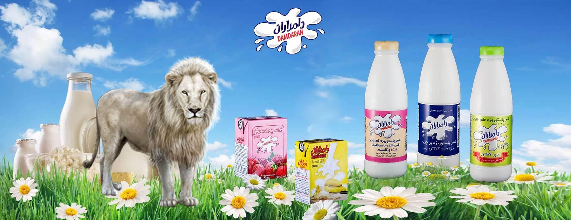 خط تولید شیر
