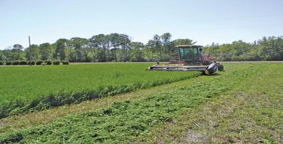 اشراق - واحد کشاورزی
