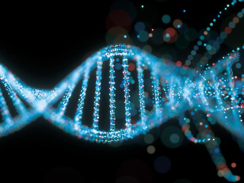 نوعی از DNA کدگذاری نشده در خطر ابتلا به اتیسم نقش دارد.