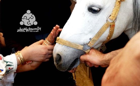 اثربخشی هیپوتراپی (اسب درمانی) بر اختلالات رفتاری و مهارت های اجتماعی کودکان مبتلا به طیف اتیسم
