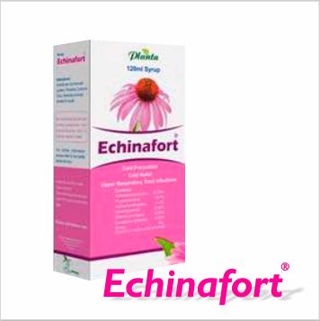 Echinafort