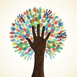 آزمون فرهنگ سازمانی