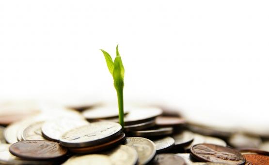 سازمان های تأمین کننده منابع مالی