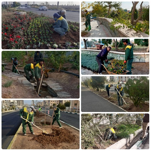 اقدامات گسترده مدیریت شهری پرند در حوزه فضای سبز