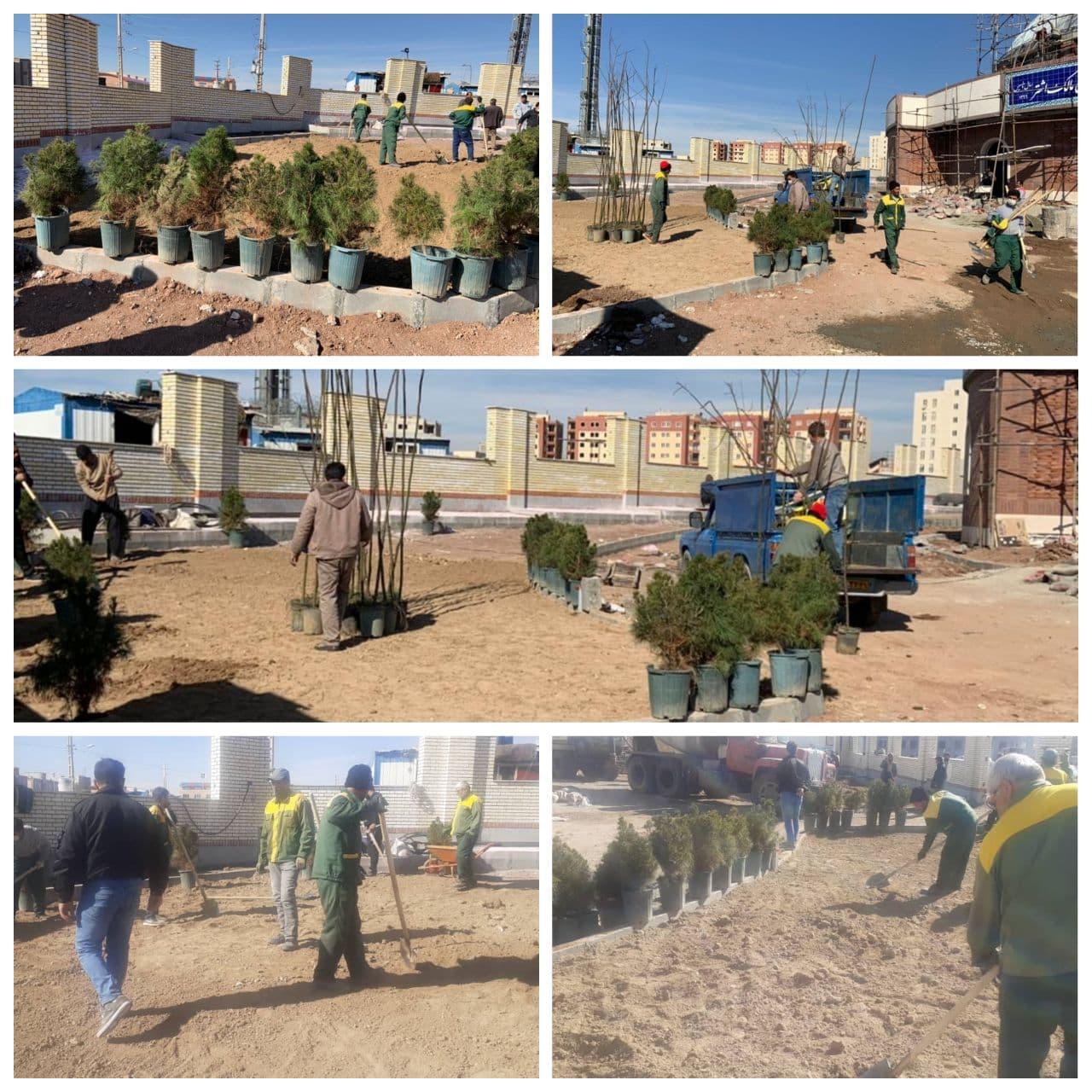 اجرای کاشت عرصه های فضای سبز در پروژه ورزشی زورخانه