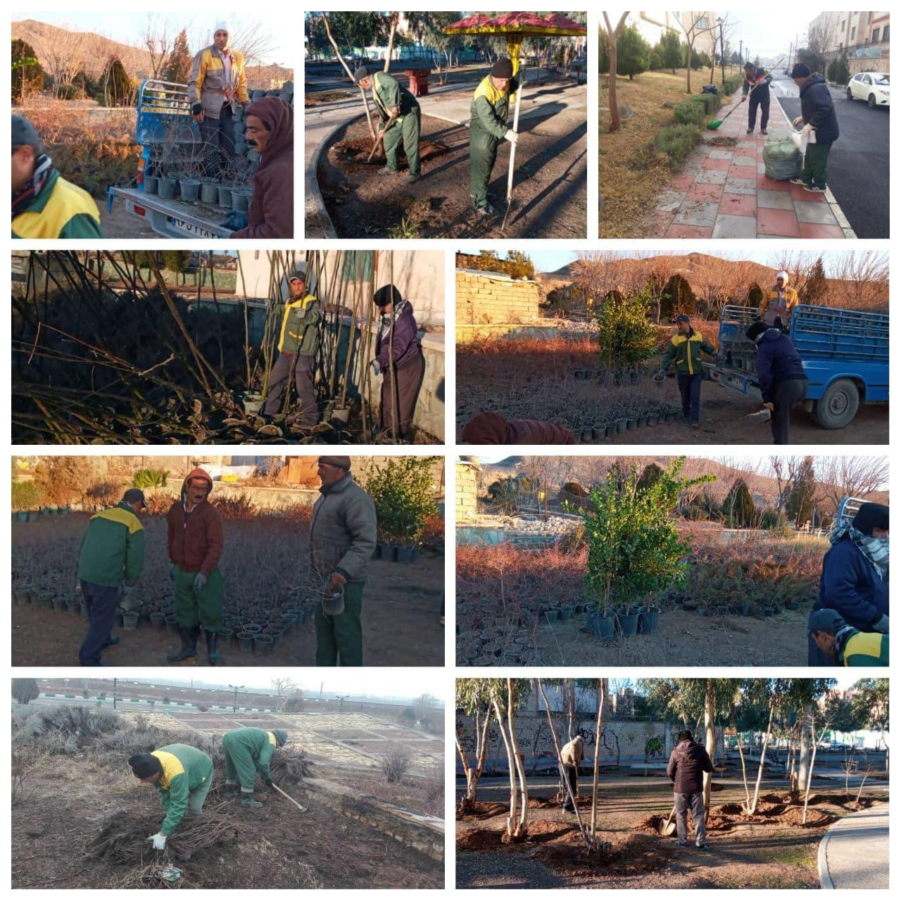 کاشت نهال در 2 هکتار از اراضی ورودی شهر پرند