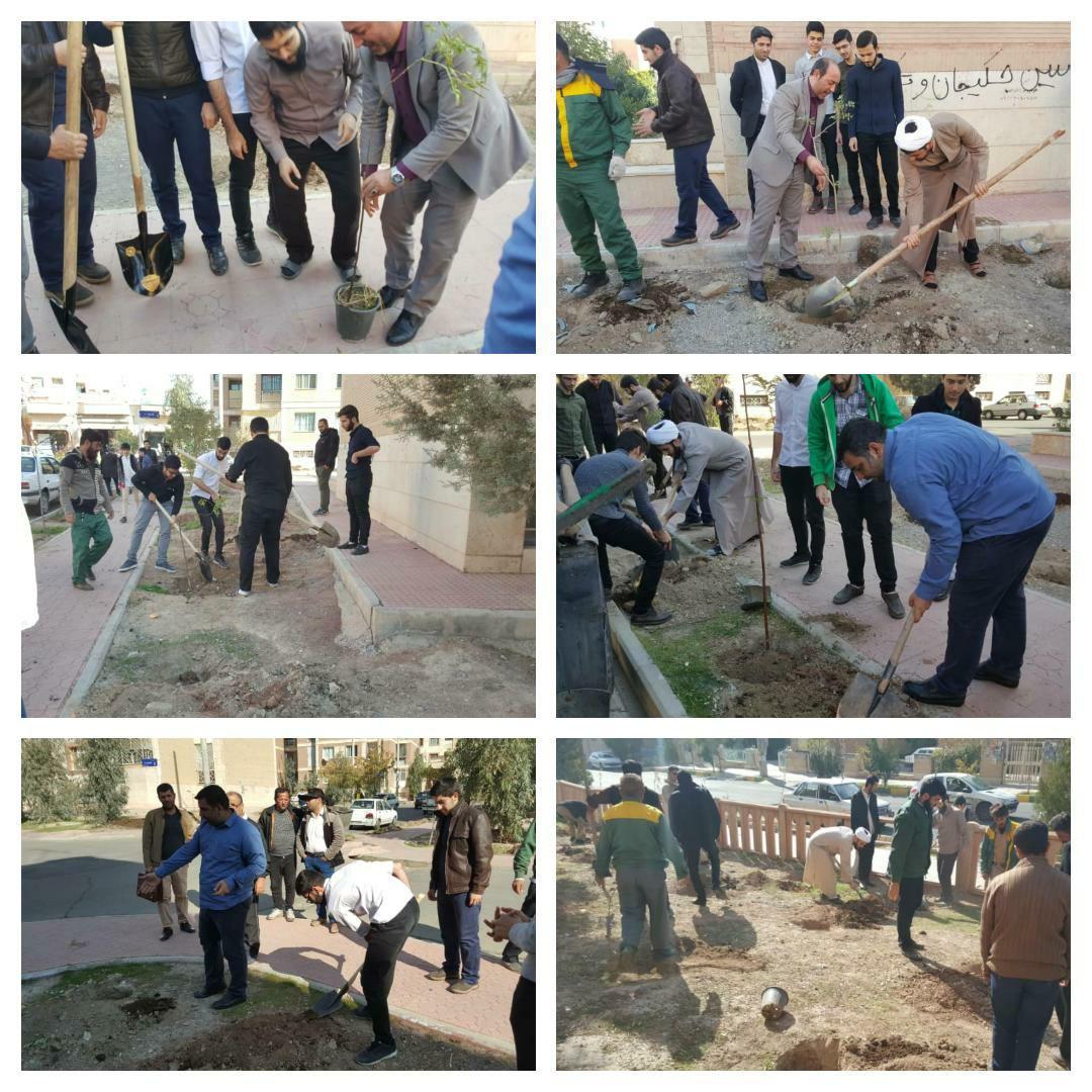 اجرای طرح جهادی کاشت محله به محلۀ نهال در شهر پرند / ۵۰۰ اصله نهال در محله فاخته کاشته شد