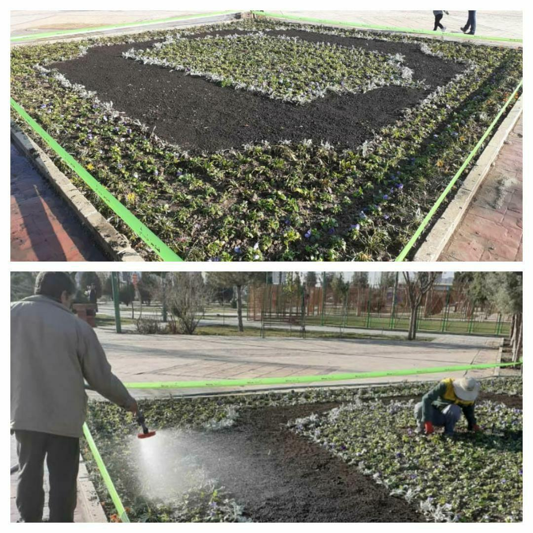 اجرای نخستین طرح کاشت فرش گل در بوستان فدک شهر پرند