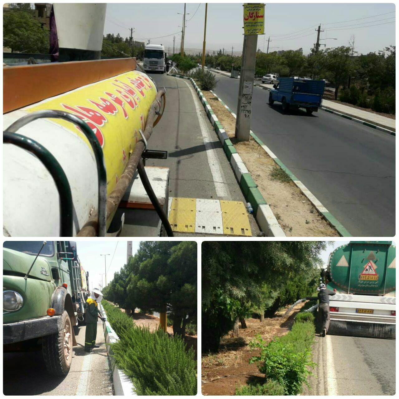 درختان پرند سیراب می شوند / تدابیر شهرداری پرند برای آبیاری گسترده فضای سبز