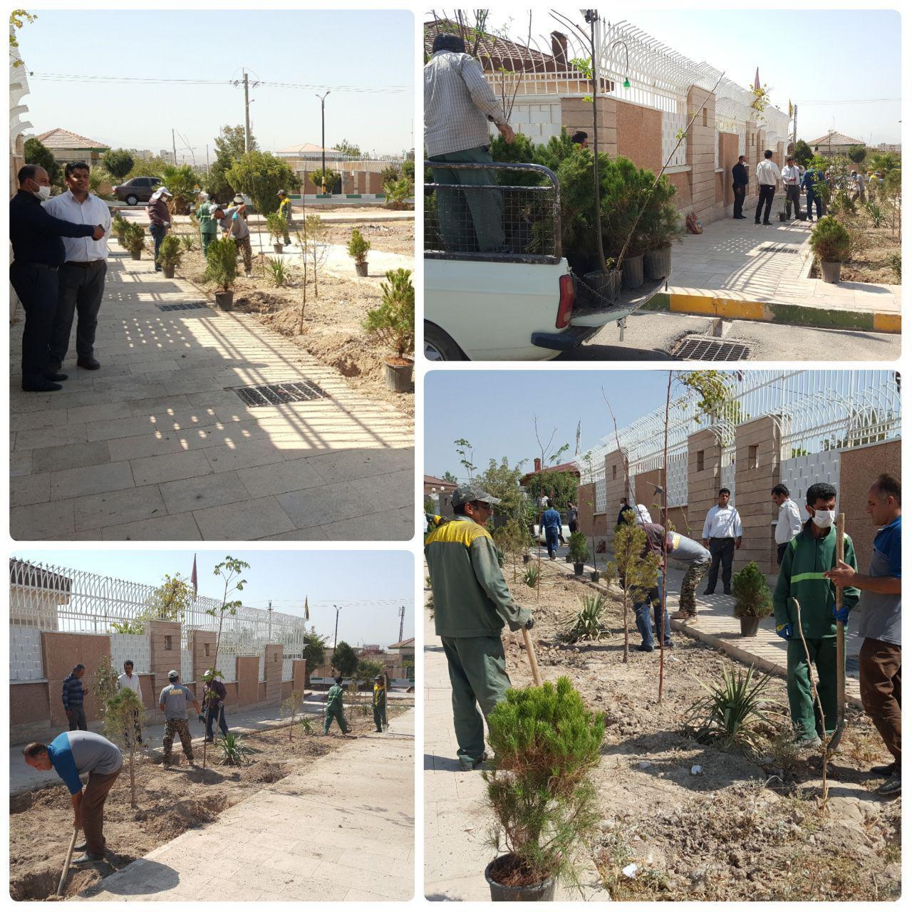 کاشت و واکاری عرصه های فضای سبز در فاز دو شهر پرند