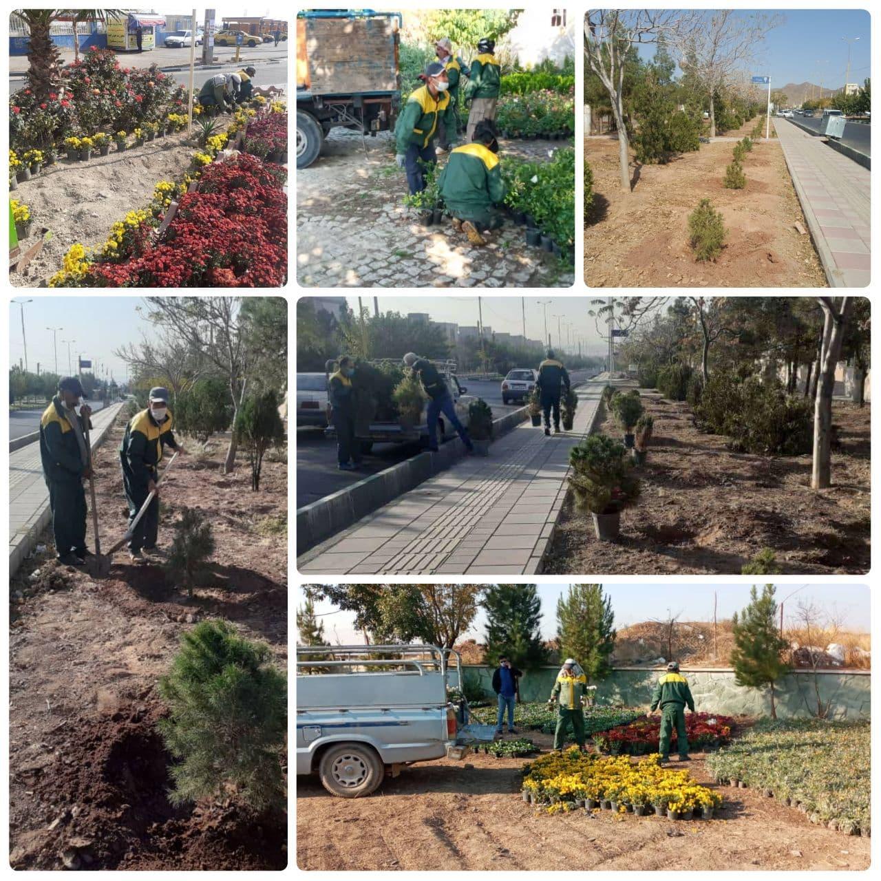 تداوم عملیات گسترده گل و درختکاری در شهر پرند