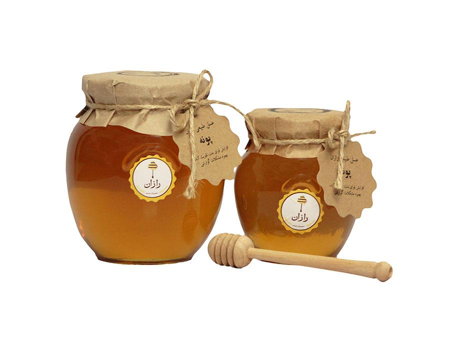 عسل-پونه1.jpg