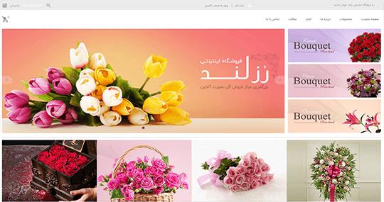 طراحی سایت رزلند