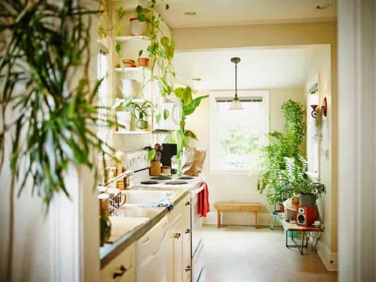 راز داشتن آشپزخانه ایده آل
