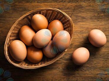 بخشنامه121 سال99 - بخشنامه گمرکی-بخشنامه-صادرات تخم مرغ-تهران پیشرو-ترخیص کالا