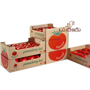 کارتن سبزیجات صادراتی (نکو کارتن)