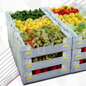 جعبه میوه و سبزیجات (کارتن پلاست)