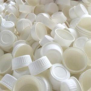 ظرف یکبار مصرف گیاهی (اربل)