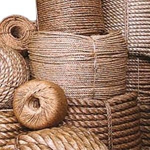 طناب مانیلا (باختر پدید)