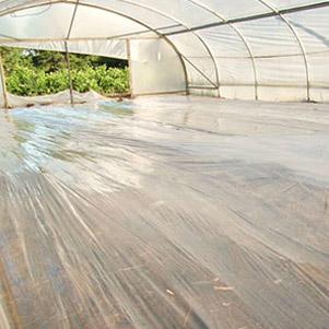 ضد عفونی کننده خاک (سمن پلاست)