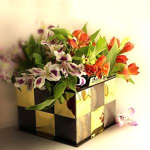 باکس گل شیک (ژیکال)