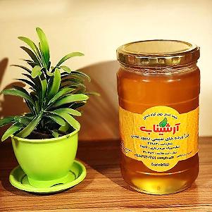 عسل طبیعی شیشه ای (ارشیناب)