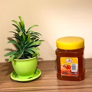 عسل چهل گیاه خمین (ارشیناب)