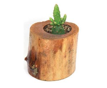 گلدان چوبی فیل چوب