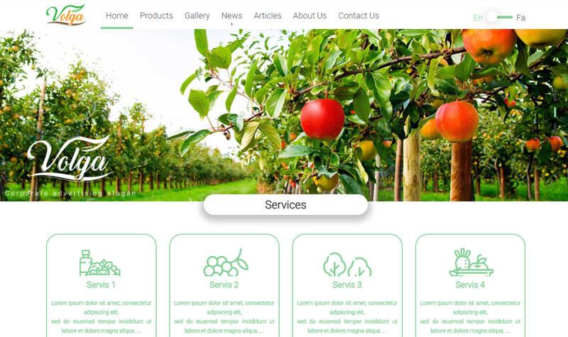 طراحی سایت میوه ولگا
