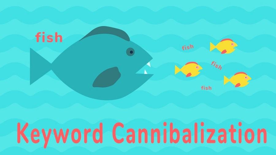 کنیبالیزیشن در سئو (cannibalization) چیست و نحوه تشخیص و برطرف کردن آن چگونه است؟