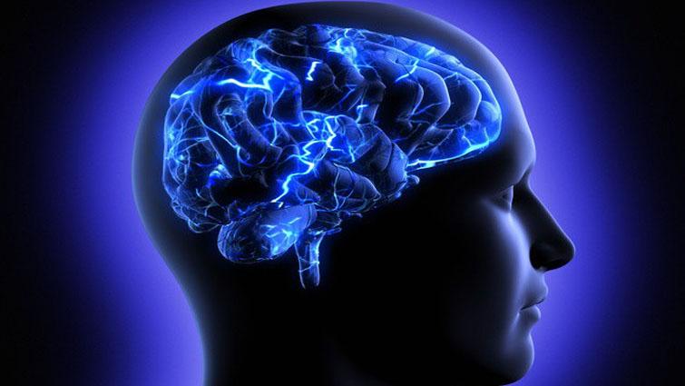 تاثیر آلودگی هوا بر مغز