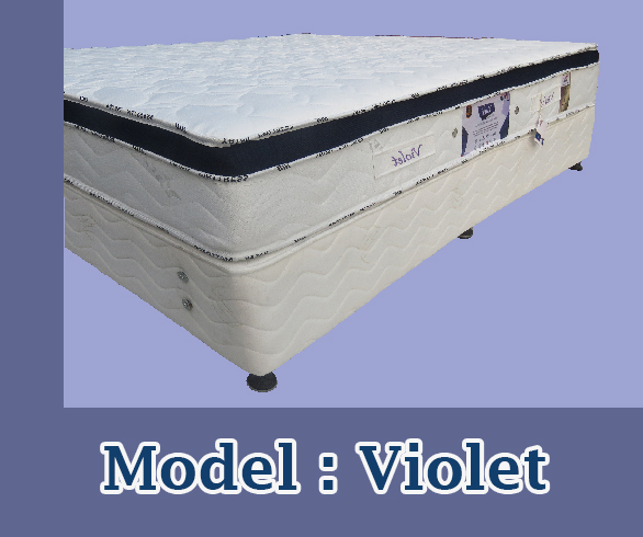 تشک مدل ویولت