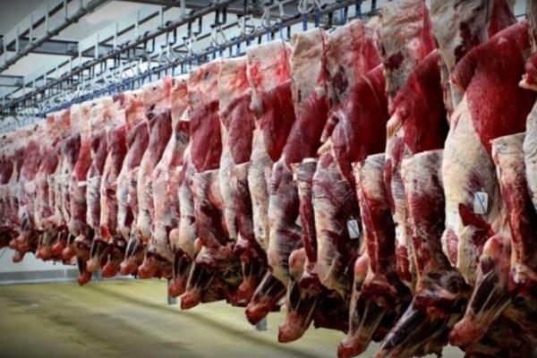 موج جدید کاهش قیمت گوشت