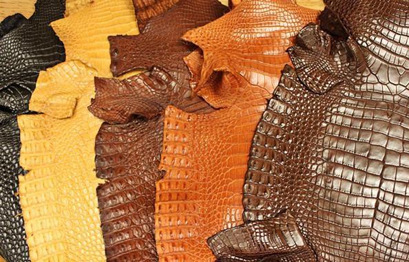 چرم کروکدیل یا رنگ های مختلف