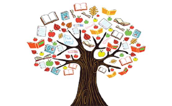 خلاصه نویسی در کنکور روان شناسی به روش درخت دانش
