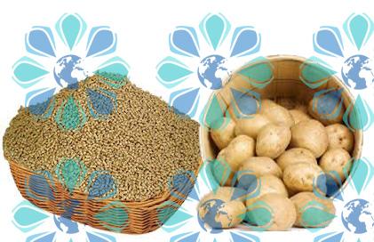 درخواست اعمال ممنوعیت صادرات سیب زمینی و خوراک دام و طیور از ۱۵ مهرماه ۹۷ – تهران پیشرو – شرکت ترخیص کالا