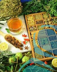 لیست کالاهای معاف از داشتن گواهی بهداشت گیاهی - تهران پیشرو - شرکت ترخیص کالا