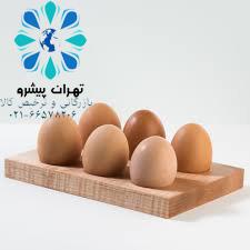 بخشنامه 263 سال 96 - واردات تخم مرغ