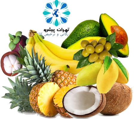 بخشنامه 310 سال 96 - واردات 6 میوه گرمسیری و نحوه ورود موقت انواع خشکبار