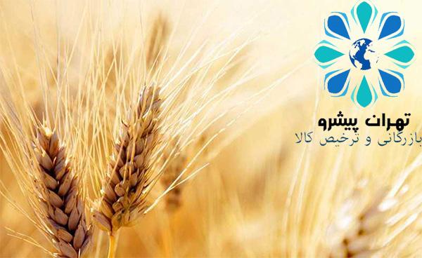 بخشنامه 415 سال 95 - بلامانع بودن ترخیص کلیه گندم های موجود در گمرک